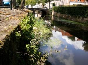 city nature amersfoort 2