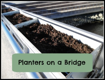 planters on a bridge