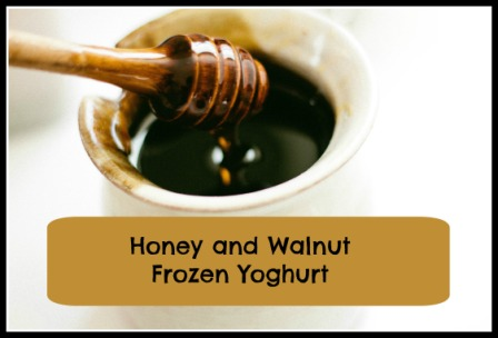 Honey and Walnut Frozen Yoghurt