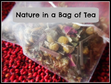 Nature in a Bag of Tea