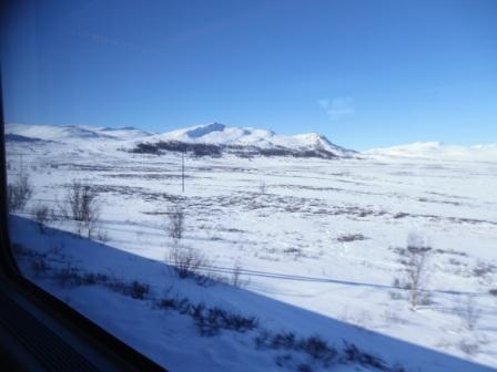 Just look at that view! The Dovrefjell in winter is amazing!