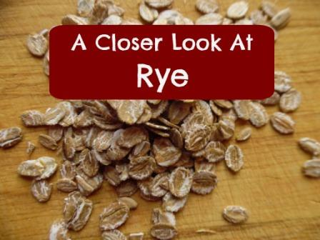 a closer look at rye top