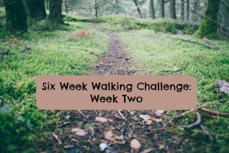 walking challenge week 2 small