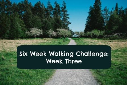 walking challenge week 3 top