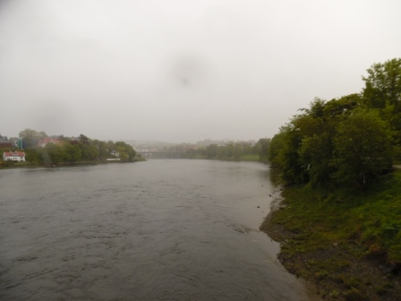 Nidelva in rainy june