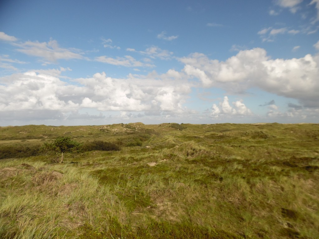 view of Terschelling