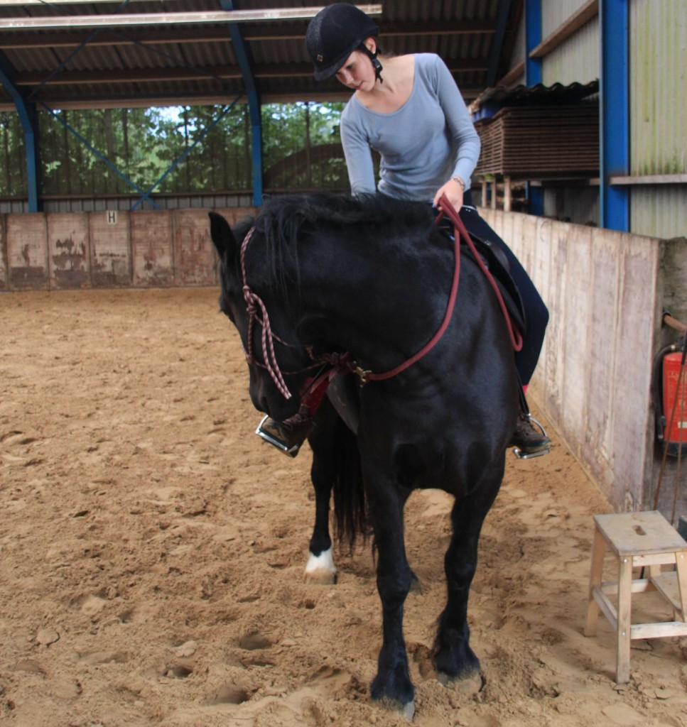 Asking Emily to bend her neck helps release tension and is a great check to see if she is feeling relaxed enough for riding