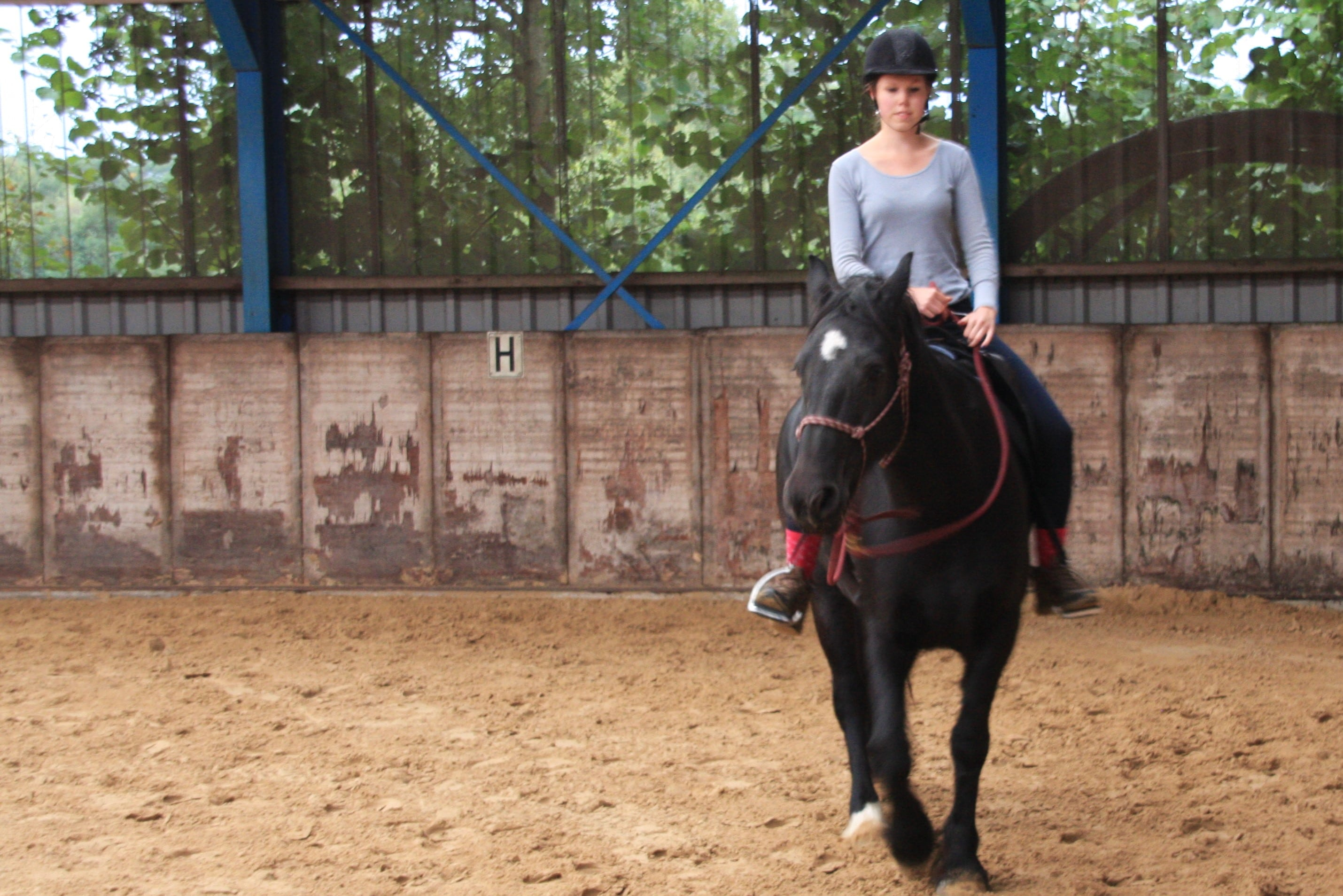 freestyle-riding-horse-parelli-riding